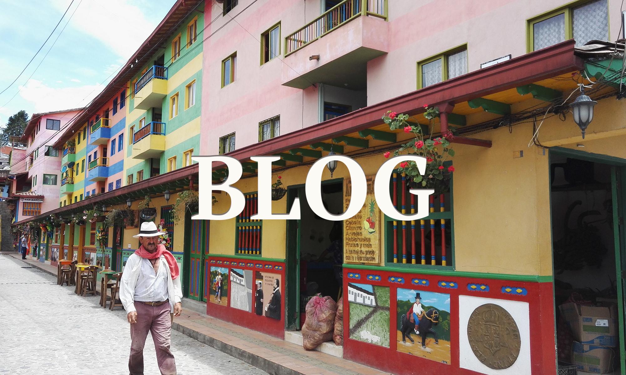 Blog Carolina González